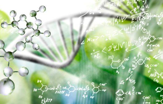 Piergiorgio Spaggiari svela che cosa sono la Medicina Quantistica e la Biorisonanza